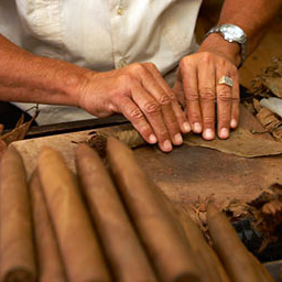 Hand-Crafted Cuban Cigars
